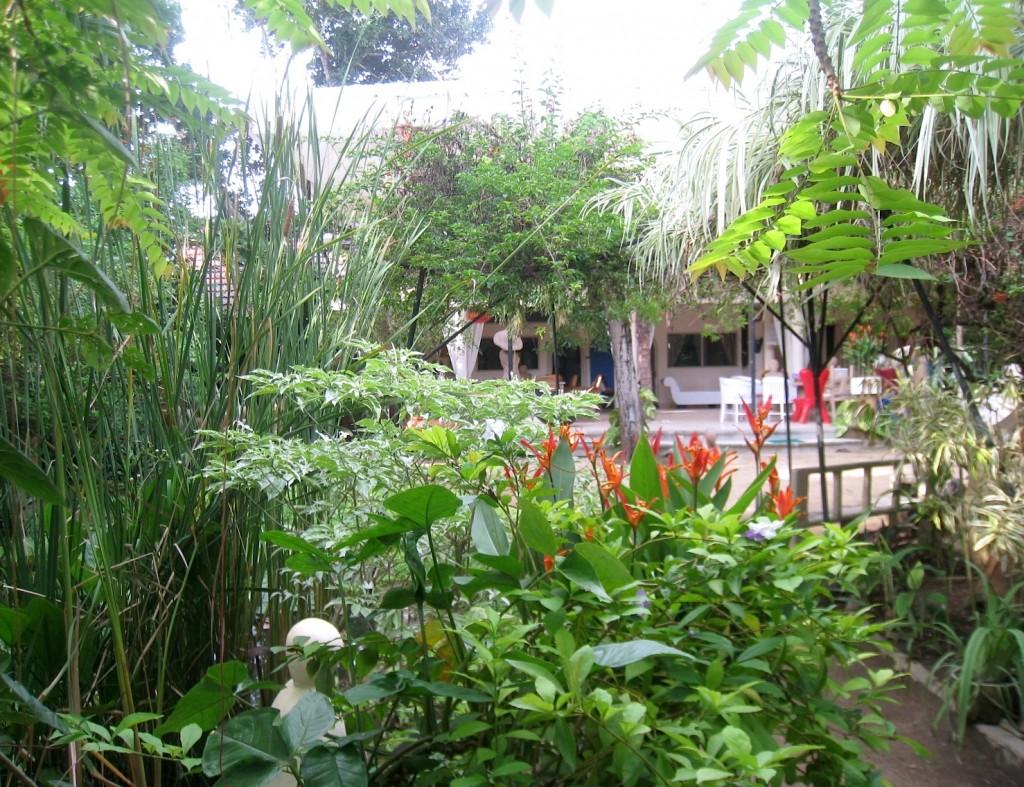 Garden to villa view - EIP Bali